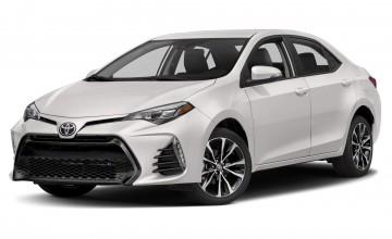 Toyota Corolla (2019 г.в.)
